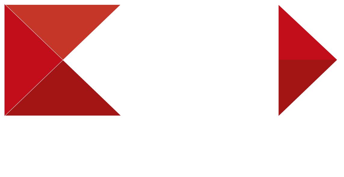 ance-logo-white